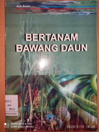 Bertanam Bawang Daun