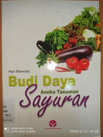 Budidaya Aneka Tanaman Sayuran