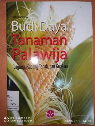 Budidaya Tanaman Palawija