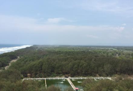 Pantai Goa Cemara 2